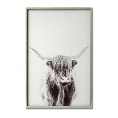 Highland Cow Right Facing Glass Image with Silver Rectangular Wooden Frame