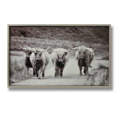 Highland Cattle Glass Image with Silver Rectangular Wooden Frame