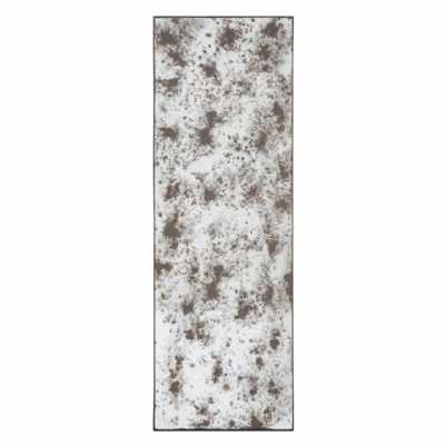Riza Tall Rectangular Distressed Speckled Antiqued Glass Wall Mirror