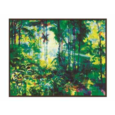 Doug Eaton (Tropical Rainforest)