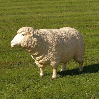 Lifesize Outdoor Decorative Novelty Merino Sheep