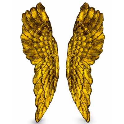 Extra Large Pair Of Antique Gold Wall Angel Wings