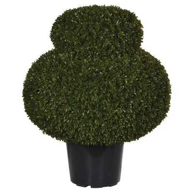 Green Outdoor Cottage Loaf Box Topiary In Black Plastic Po