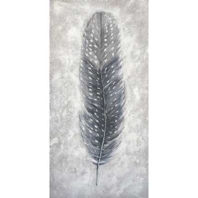 Contemporary Style Paintings Grey Feather Canvas Wall Art 120 x 60cm